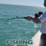 FL Fishing Charters